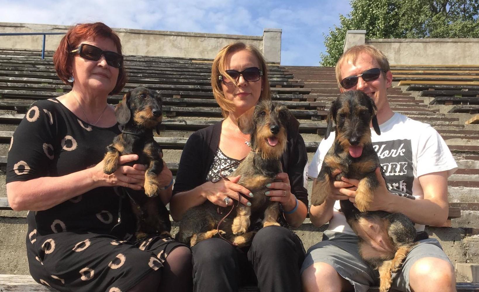 Tallinn international 2016 successfull dogs
