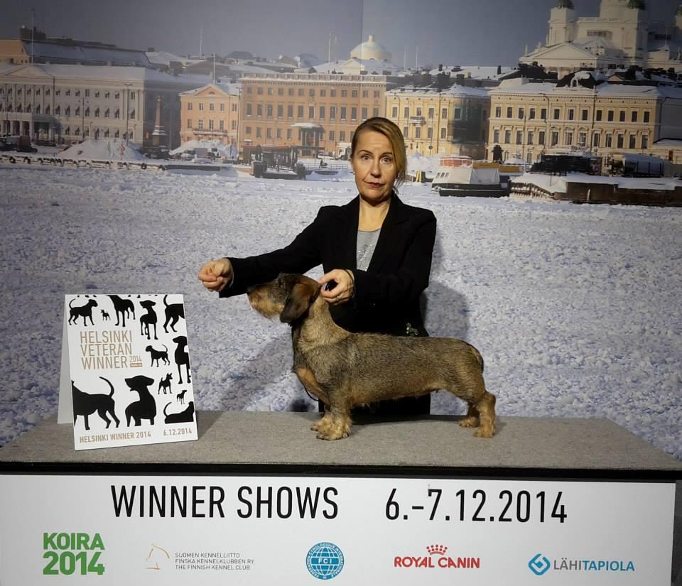 Helsinki Veteran Winner 2014 MultiCh Multwinner Freckle-Face Minuet
