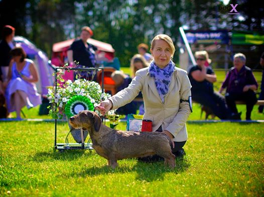 BIG 4 PORI INTERNATIONAL 2014 MultiCh Multiwinner Freckle-Face Minuet