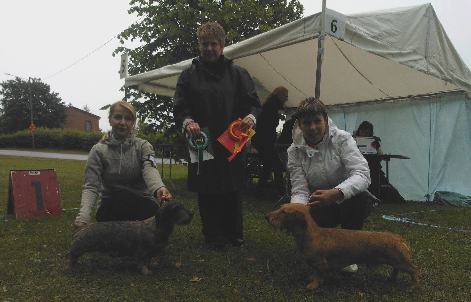 FORSSA ALL BREEDS SHOW